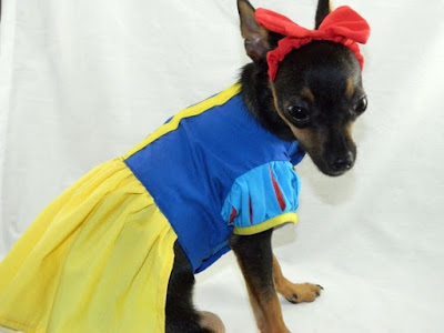 Snow White Princess Dog Costume