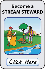 Become a Stream Steward