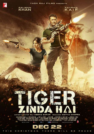 Poster of Tiger Zinda Hai 2017 Full Hindi Movie Download BRRip 1080p Free Watch Online Hd