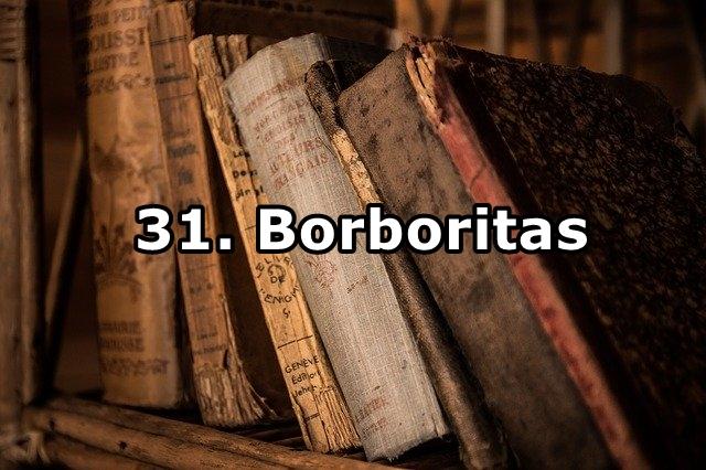 31.Borboritas