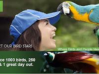 Bali Bird Park, Objek Wisata Menarik Wajib Anda Kunjungi