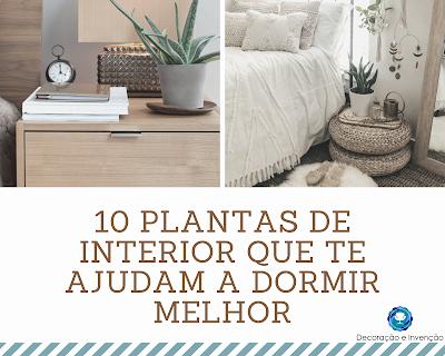 10 Plantas de Interior que ajudam a melhorar o sono