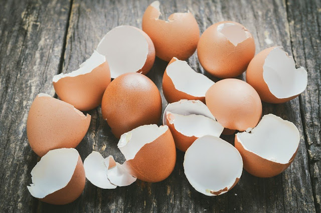 Yumurta Kabuklarını Atmayın, Yumurta Kabuğunun Ev işlerindeki Faydaları?