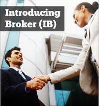 IB Forex broker