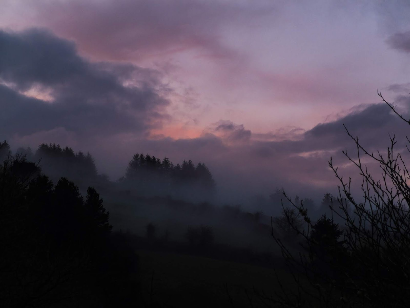 Fog rising from the mountainside during a light pink cloud sunset.