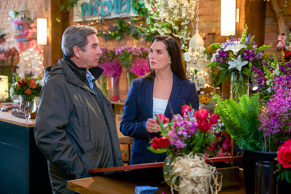 Mystery playground hallmark mysteries channel the flower Hallmark flowers