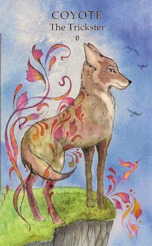 Animal Tarot Cards: Tarot Notes