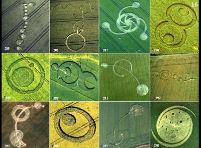 Imágenes de circulos de las cosechas de Colin Andrews