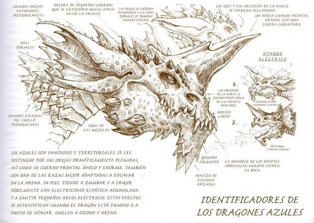 Los Dragones en Dungeons & Dragons - Draconomicón