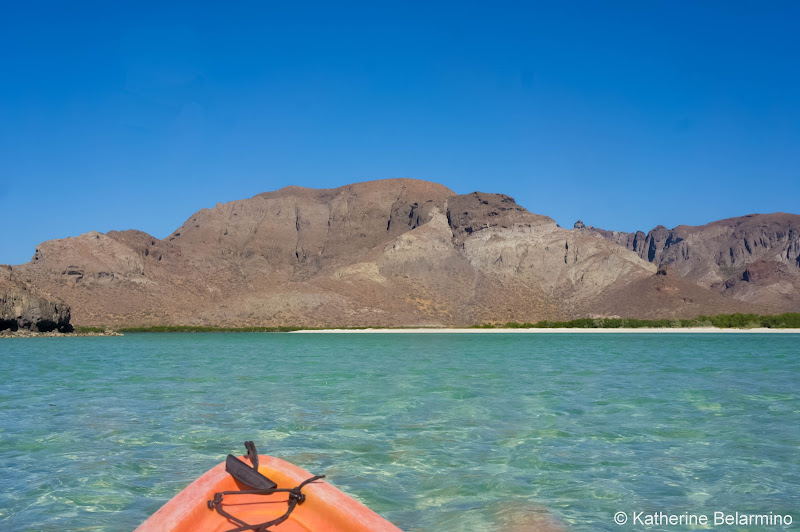 Kayaking Balandra Beach Things to Do in La Paz Mexico