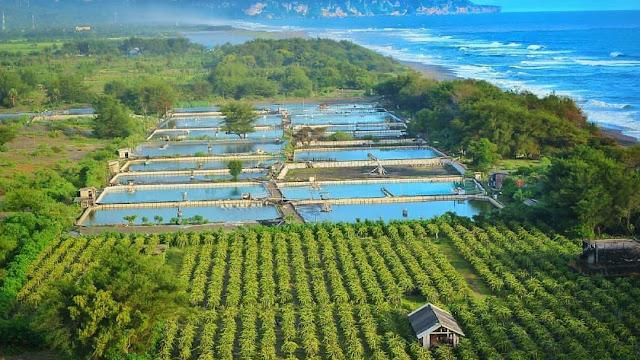 Pantai Pandansari Bantul, Spot Foto Menara Mercusuar