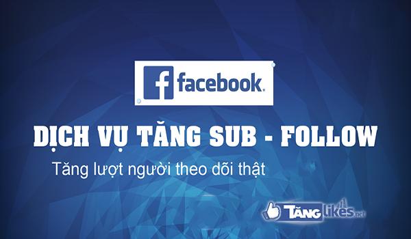 dich vu tang sub
