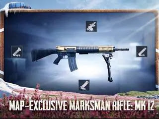 PUBG Mobile: MK12 gun damage, map locations, and many more.