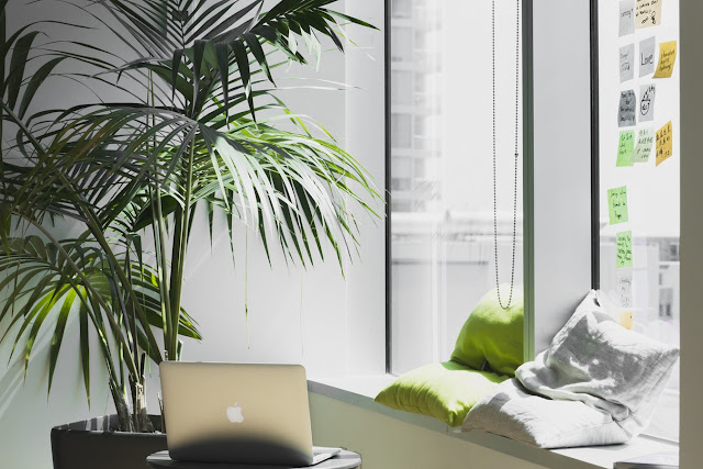 Make your work space green