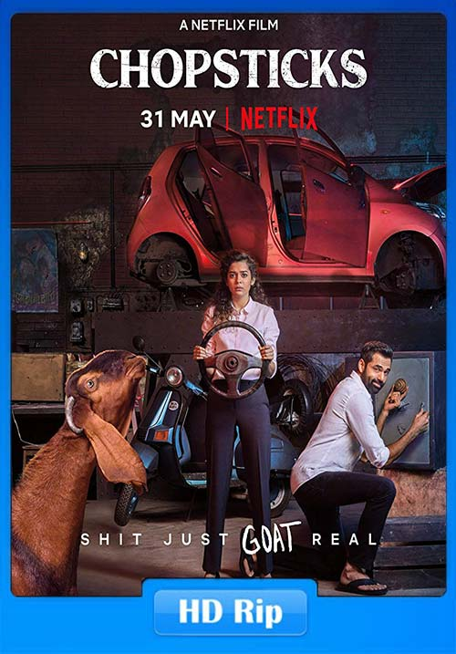 Chopsticks 2019 Hindi 720p NF WEB-DL x264 | 480p 300MB | 100MB HEVC Poster