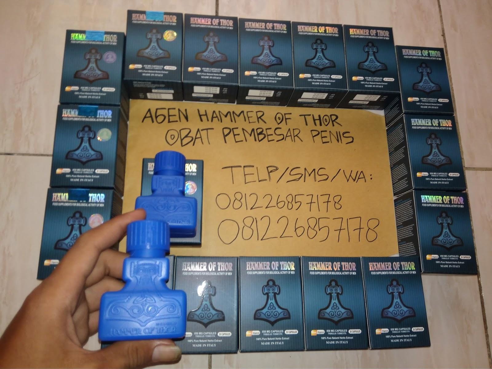 081226857178 hammer of thor sleman hammer of thor jogja telp