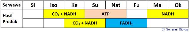 perbedaan katabolisme dan anabolisme beserta contohnya, pengertian katabolisme dan anabolisme beserta contohnya, pengertian katabolisme dan anabolisme beserta contoh, pengertian metabolisme anabolisme katabolisme dan contohnya, perbedaan katabolisme dan anabolisme dalam bentuk tabel, pengertian dari metabolisme katabolisme dan anabolisme, perbedaan pengertian metabolisme enzim anabolisme dan katabolisme, pengertian metabolisme anabolisme katabolisme dan fotosintesis, jelaskan pengertian metabolisme katabolisme dan anabolisme, pengertian metabolisme katabolisme anabolisme kemosintesis fotosintesis, perbedaan katabolisme dan anabolisme karbohidrat, pengertian katabolisme dan anabolisme karbohidrat, perbedaan katabolisme dan anabolisme serta contohnya, pengertian katabolisme dan anabolisme serta contohnya, contoh dari metabolisme katabolisme dan anabolisme