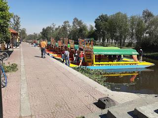 flor más bella del ejido 2020 xochimilco