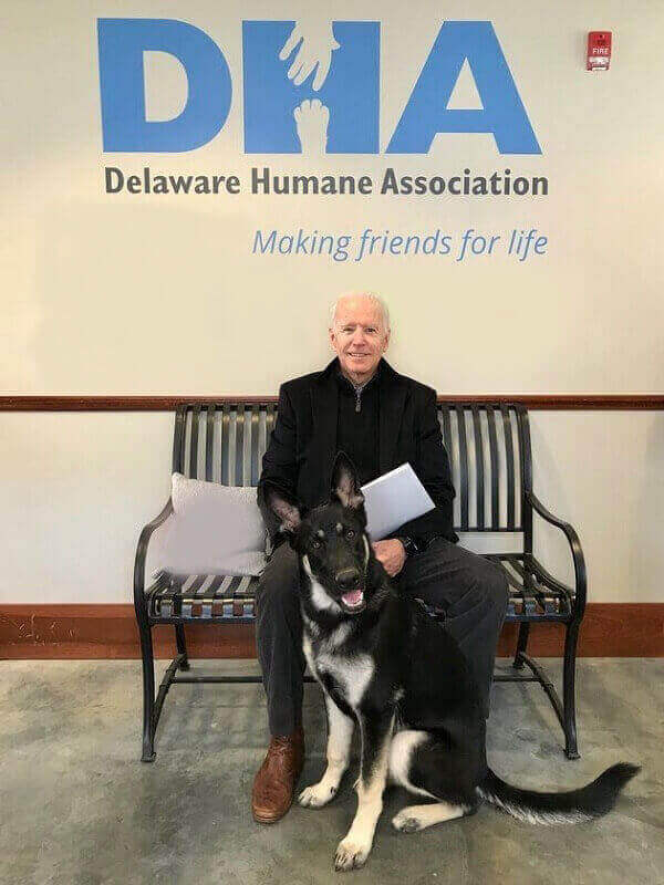 Joe Biden Adopts a Rescue Dog Named Major