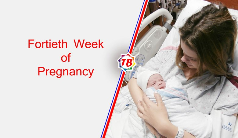 Fortieth Week of Pregnancy