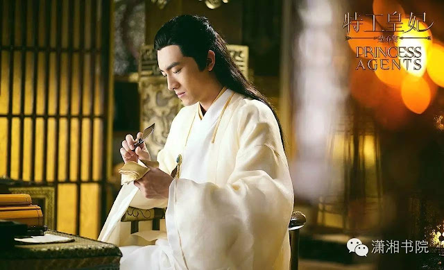 Lin Gengxin in 2017 Chinese time-travel drama Princess Agents