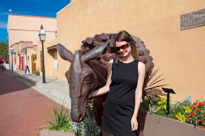 Burro Alley Santa Fe New Mexico by Laurence Norah-3