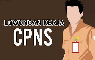 Lowongan CPNS 2018 Kota Tanjungbalai