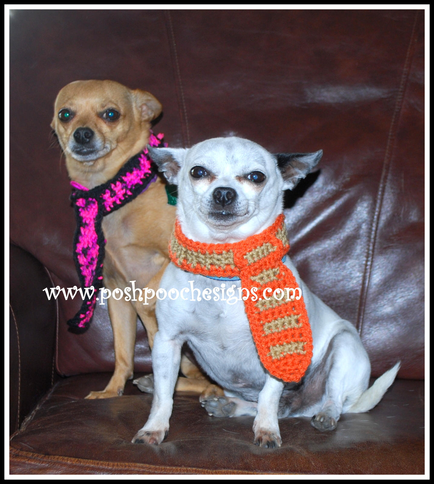 Posh Pooch Designs Dog Clothes: Dog Neck Tie Crochet Pattern