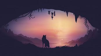 Fox, Cave, Minimalist, 4K, #6.2176