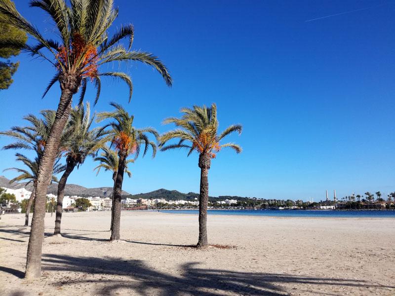 Port d'Alcudia, 30 novembre 2019