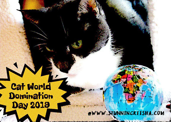 Cat World Domination Day 2019