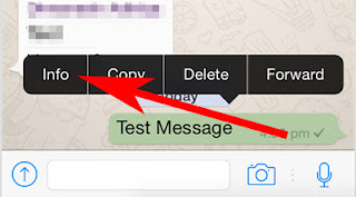 Cara Mengetahui siapa saja yang telah membaca pesan pada group WhatsApp di iOS & Android