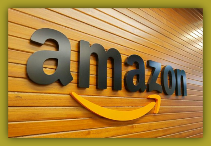 Amazon Invested 50 Corers In Indian Company | Company Business News
