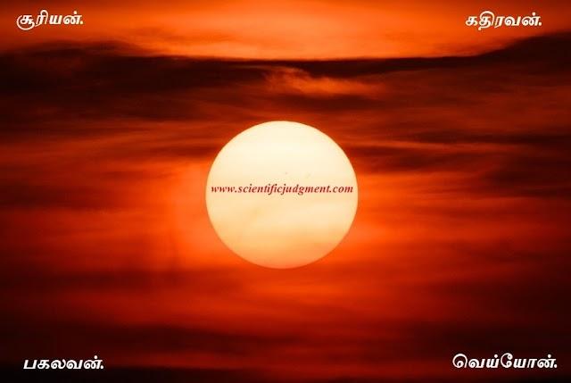 சூரியன் - Sun star.