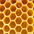 Yalancı Ana Arı ve Mücadelesi