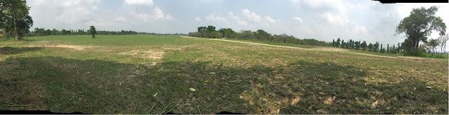 ขายที่ดินมาบคล้า ชลบุรี เนื้อที่ดิน 264 ไร่ 48 ตารางวา ที่ดินดังกล่าว มีการพัฒนาแล้ว มีบ่อน้ำ 3 บ่อ เนื้อที่บ่อ 10 ไร่ มีน้ำตลอดทั้งปี