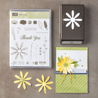 Daisy Delight Bundle - save 10% - Simply Stamping with Narelle - get yours here - http://www3.stampinup.com/ECWeb/ProductDetails.aspx?productID=145361&dbwsdemoid=4008228