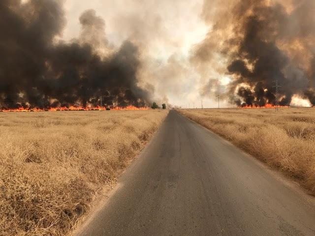 الحرائق والنواعق