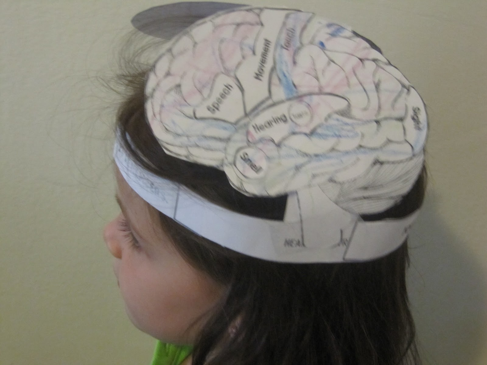 Jewish homeschool in nyc sunday science brain hat for Brain hat template