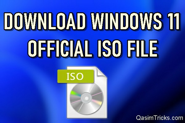 How to Download Windows 11 ISO File from Microsoft