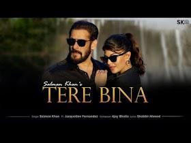 तेरे बिना Tere Bina Lyrics – Salman Khan