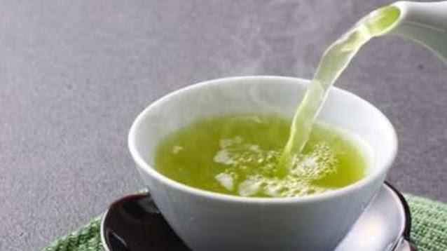 manfaat daun teh hijau untuk kesehatan.