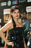 Glamarous Actress Neetu Chandra in Black dress at IIFA Utsavam Awards 012.JPG