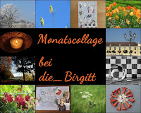 https://diebirgitt.blogspot.com/2019/12/monatsruckblick-dezember.html