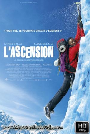El Ascenso [1080p] [Latino-Frances] [MEGA]