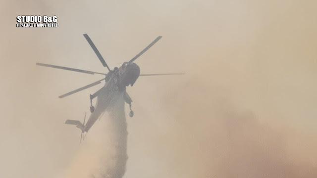 Η μεγάλη πυρκαγιά στο Αραχναίο Αργολίδας που απείλησε το χωριό Γκάτζια (βίντεο)
