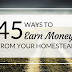 45+ ways to earn money on your homestead!
