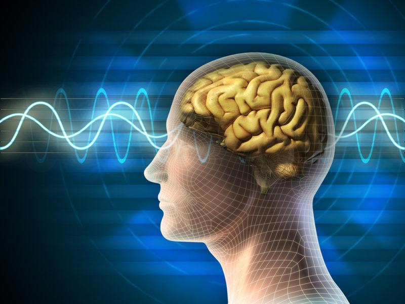 O Que Acontece Com Seu Cérebro Quando Você Reclama