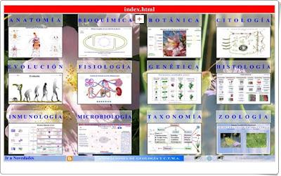 http://cienciasnaturales.es/ANIMACIONESBIOLOGIA.swf