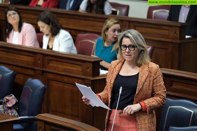 Vanoostende defiende la unidad de acción entre el Gobierno central y el Ejecutivo canario para mejorar las condiciones del sector